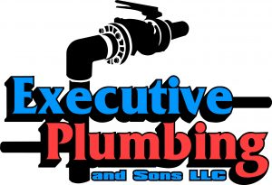ExecutivePlumbing01